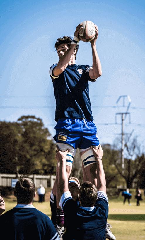 rugby batting software development